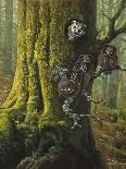 Save Our Environment-Harro Maass-Giclee Print