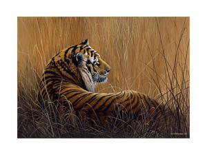 Tiger in Grass by Harro Maass