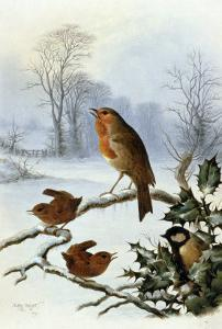 Christmas Robin and Friends by Harry Bright