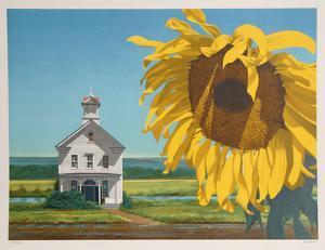 Sunflower by Harry Devlin