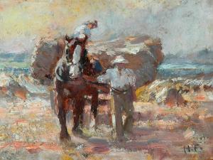 The Harvester by Harry Fidler