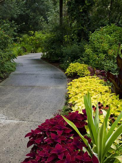 Harry P. Leu Gardens, Orlando, Florida, United States of America, North America-Michael DeFreitas-Photographic Print