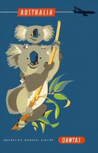 Australia - Koala Bears by Harry Rogers