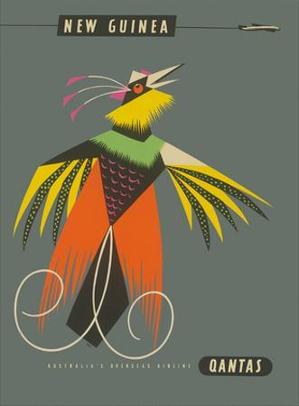 New Guinea - Raggiana Bird of Paradise by Harry Rogers