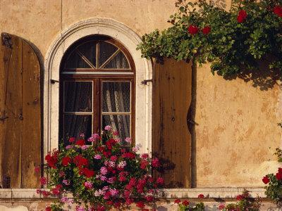 Window with Shutters and Window Box, Italy, Europe