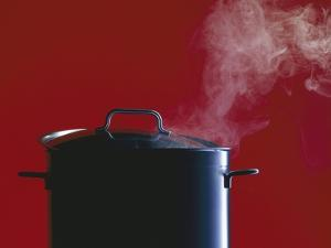 Steam Escaping from a Pan with a Lid by Hartmut Seehuber