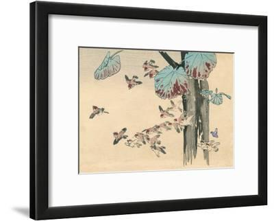 Japanese Flying Sparrows
