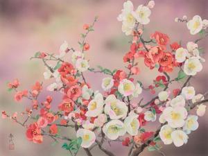 February by Haruyo Morita