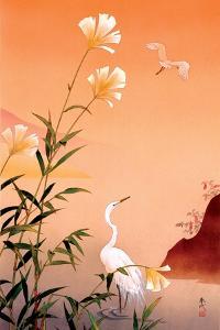 Fuyo and Tuyukusa by Haruyo Morita