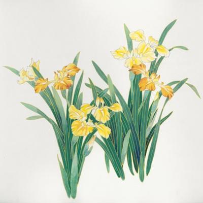 Yellow Flowers by Haruyo Morita
