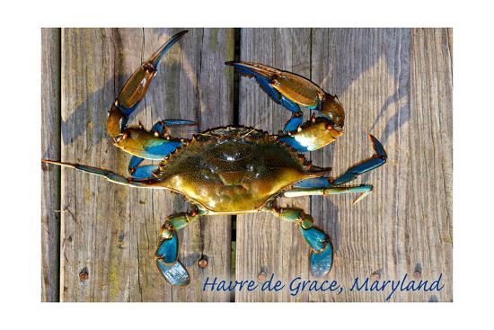 Harve De Grace, Maryland - Blue Crab on Dock-Lantern Press-Art Print