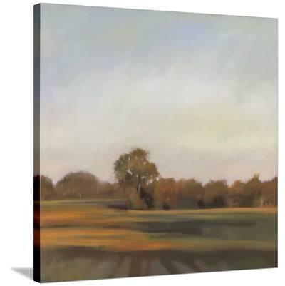 Harvest Fields-Megan Lightell-Stretched Canvas Print