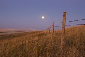 Harvest Moon Down the Road, Gleichen, Alberta, Canada