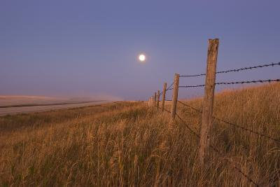 Harvest Moon Down the Road, Gleichen, Alberta, Canada--Photographic Print