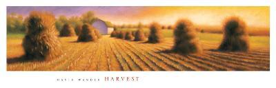 Harvest-David Wander-Art Print