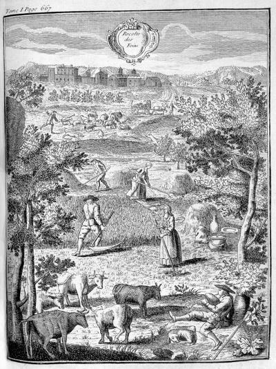 Harvesting the Hay, 1775--Giclee Print