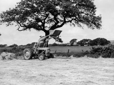 Harvesting with an International Cutter by a Massey-Fergusson 35 Tractor Fitted with a Mill Loader