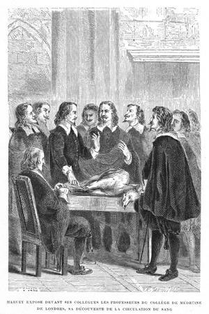 https://imgc.artprintimages.com/img/print/harvey-demonstrating-circulation-of-the-blood-to-the-college-of-physicians-c1628_u-l-ptk9870.jpg?p=0