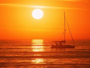Boats in Harbor, Playa Del Rey, CA by Harvey Schwartz
