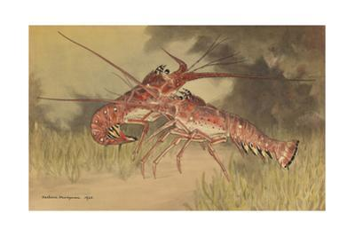Painting of Two Dueling Crayfish by Hashime Murayama