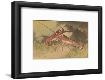 Painting of Two Dueling Crayfish