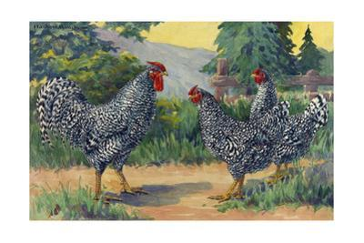 The Dominique Breed Was Named in a U.S. Poultry Show in 1849