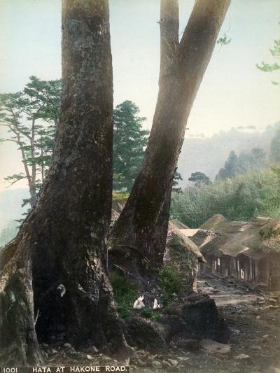 Hata at Hakone Road, Japan, Early 20th Century--Giclee Print