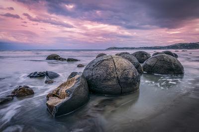 Hatchery | Otago Coast, Nz-Copyright Lorenzo Montezemolo-Photographic Print