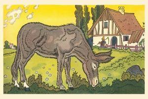 Farmer's Donkey by Hauman