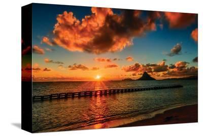 Hawaii Dreams V--Stretched Canvas Print