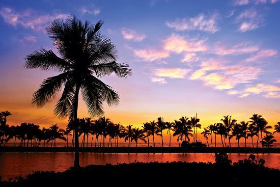 hawaii-dreams-vi