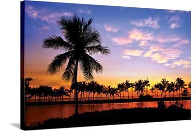 Hawaii Dreams VI--Stretched Canvas Print