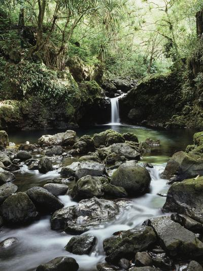 Hawaii, Maui, a Waterfall Flows into Blue Pool from the Rainforest-Christopher Talbot Frank-Photographic Print