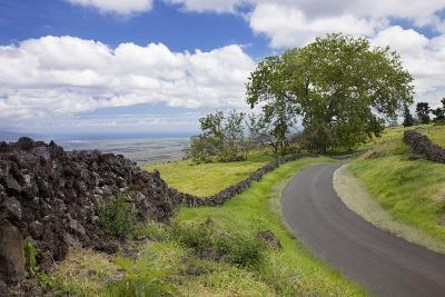 Hawaii, Maui, Kula, a Stone Wall Lines a Country Road with Views of Maui in the Background-Design Pics Inc-Photographic Print