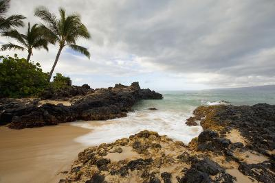 Hawaii, Maui, Makena Cove, Tropical Beach and Palm Trees-Design Pics Inc-Photographic Print
