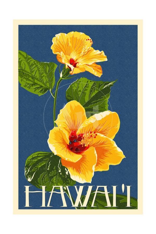 Hawaii Yellow Hibiscus Flower Art Print By Lantern Press Artcom