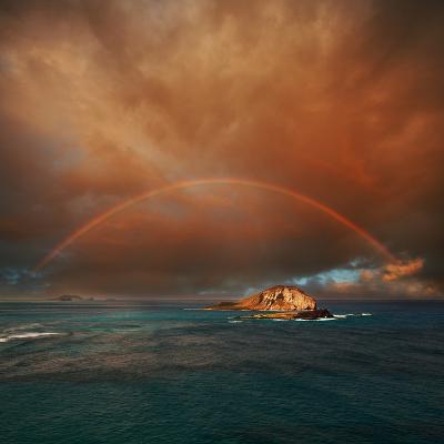 Hawaii-Galyna Andrushko-Photographic Print