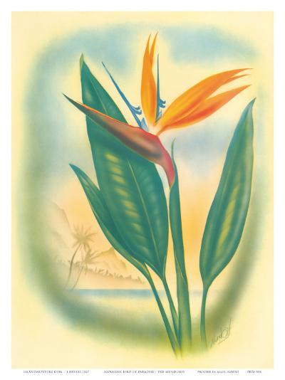 Hawaiian Bird of Paradise, c.1940s-Ted Mundorff-Art Print