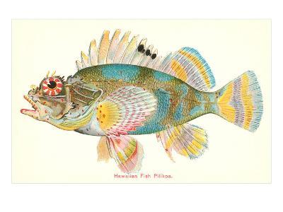 Hawaiian Fish, Pilikoa--Art Print