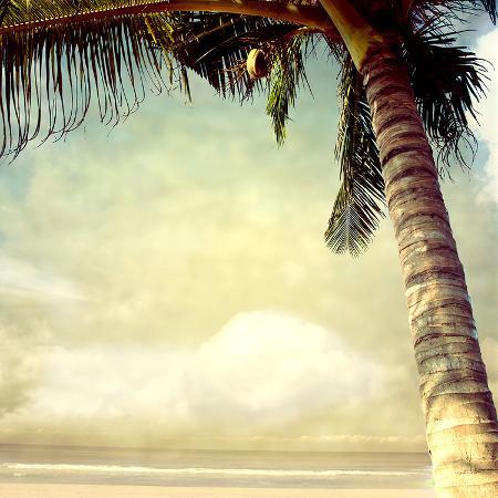 hawaiian-memories-i