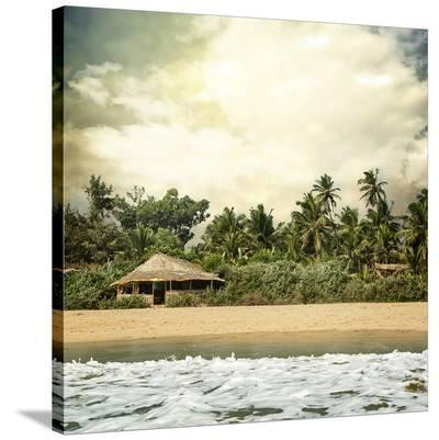 Hawaiian Memories IV--Stretched Canvas Print