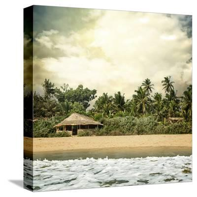 Hawaiian Memories IV--Stretched Canvas Print