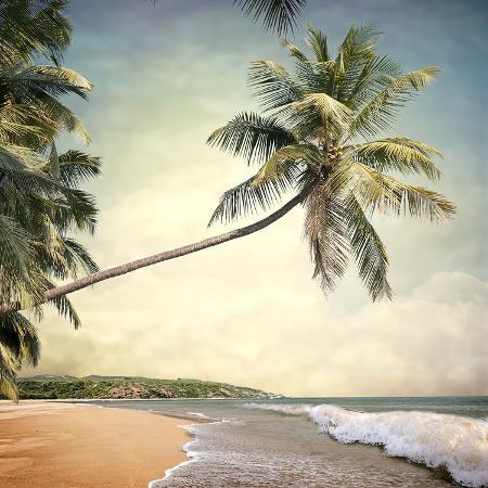 hawaiian-memories-vi
