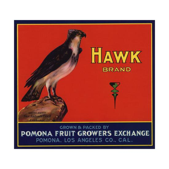 Hawk Brand - Pomona, California - Citrus Crate Label-Lantern Press-Art Print