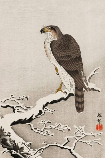 Hawk on Snow-Covered Branch-Koson Ohara-Giclee Print