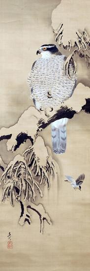 Hawk on Snowy Branch-Zeshin Shibata-Giclee Print