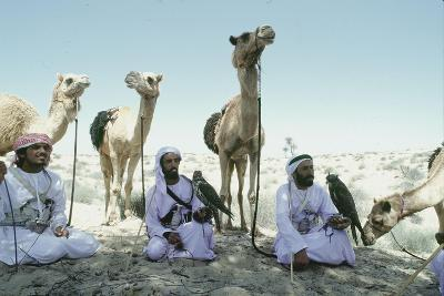 Hawking Is a Traditional Sport of the Bedu and Is Still Very Popular in the Emirates--Giclee Print