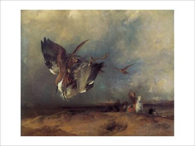 Hawking-Edwin Henry Landseer-Giclee Print