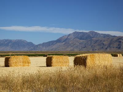 Hay Bales, Butte County, Idaho, USA-Jamie & Judy Wild-Photographic Print