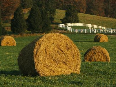Hay Bales Dot a Virginia Hillside-Raymond Gehman-Photographic Print